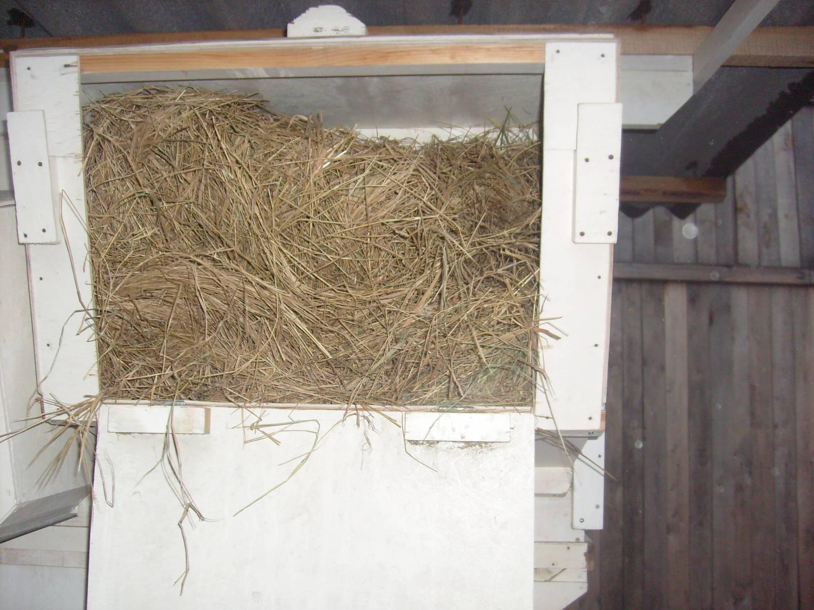 Правильное сено для кроликов Кролики. Разведение и 22